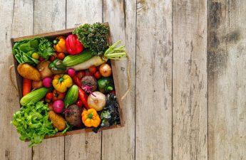 Peluang Bisnis dan Inspirasi Usaha dari Perkembangan Gaya Hidup Sehat